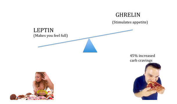 Ghrelin & leptin