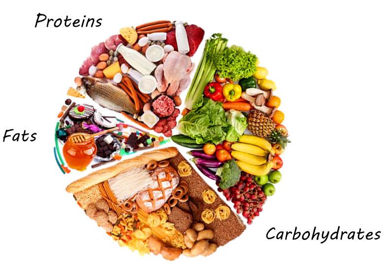Macro Nutrient