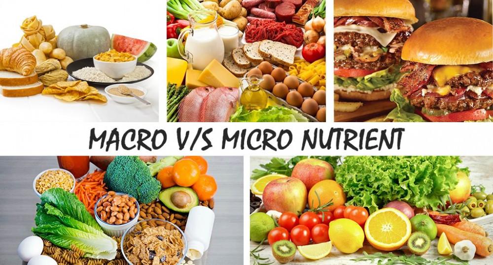 Macro vs Micro Nutrient