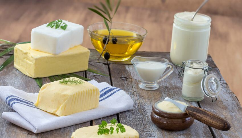 Why Are Fats Important In Our Diet?