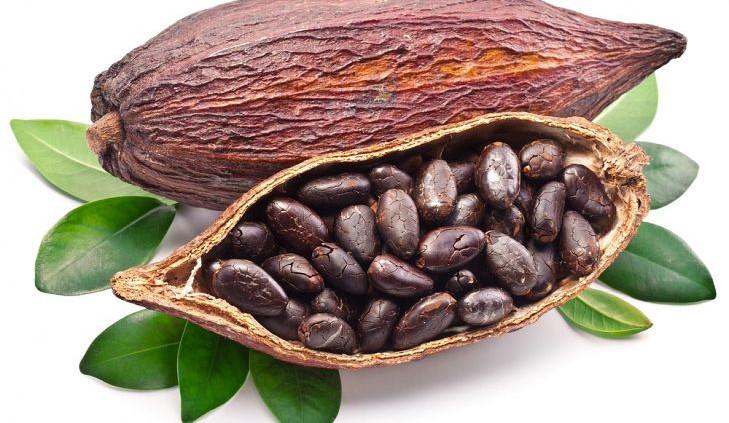 Coacao Beans