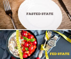 Fasted State vs Fed State